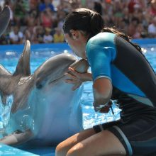 Instructor kisses dolphin at Marineland Majorca