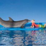 Dolpin and boy kiss at Marineland Majorca