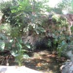 Small ornamental pond and waterfall at the Alfabia gardens in Majorca