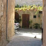 A cat resting down an alley in Calvia Majorca