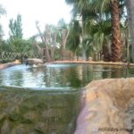 A pool with cascading waterfall at Golf Fantasia in Palma Nova Majorca