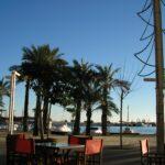 Alcudia port Majorca 2